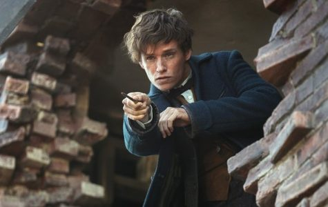 Now Showing: Fantastic Beasts and Where to Find Them