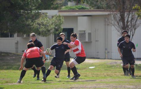 DB student tackles hard-hitting sport