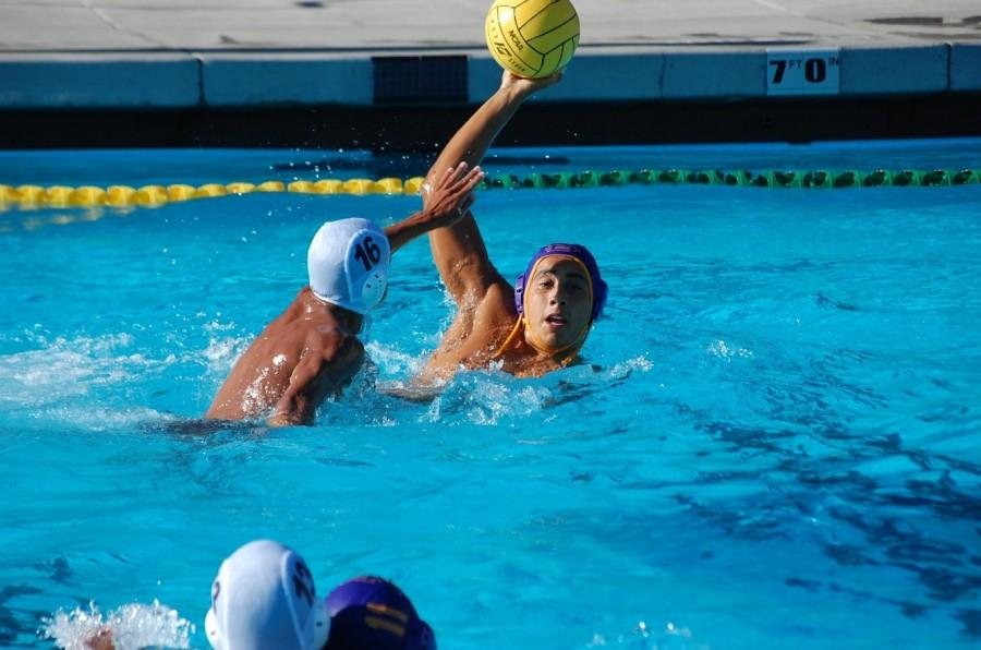 The Rise of Brahma Water Polo