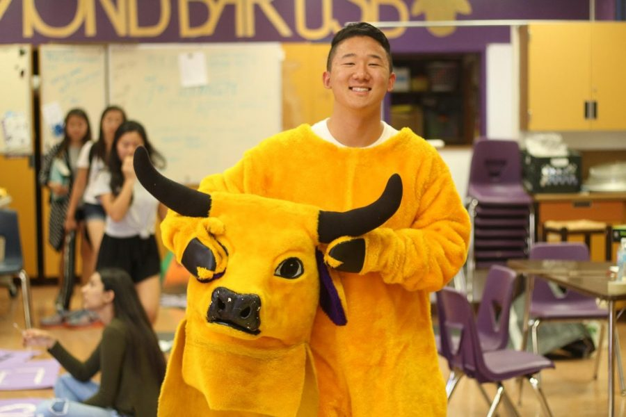 Senior DBHS USB President David Song poses in the Brahma mascot costume. This is his first year serving as the school mascot.