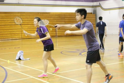 Coed volleyball offers sport for boys