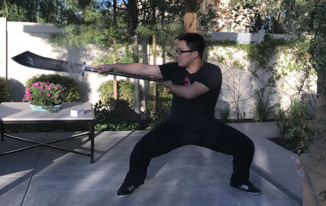 Brahma finds passion in kung fu