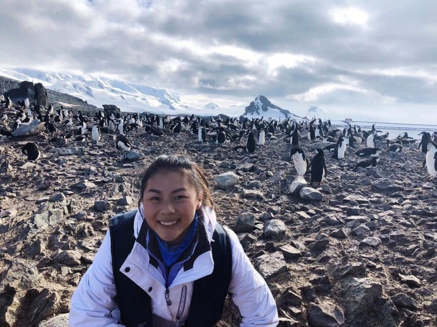 Senior+Maria+Zhu+poses+with+penguins+at+Half+Moon+Island.+She+visited+the+continent+for+six+days+with+a+tour+group.