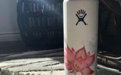 Hydro Flask art: Ashley Hanes