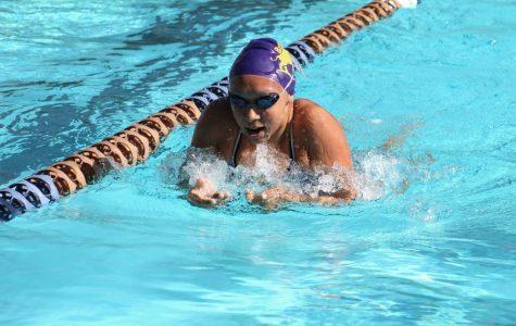 Two Brahmas set swim records