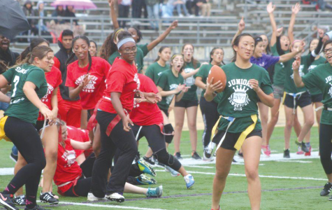 Powderpuff planned to reappear in April