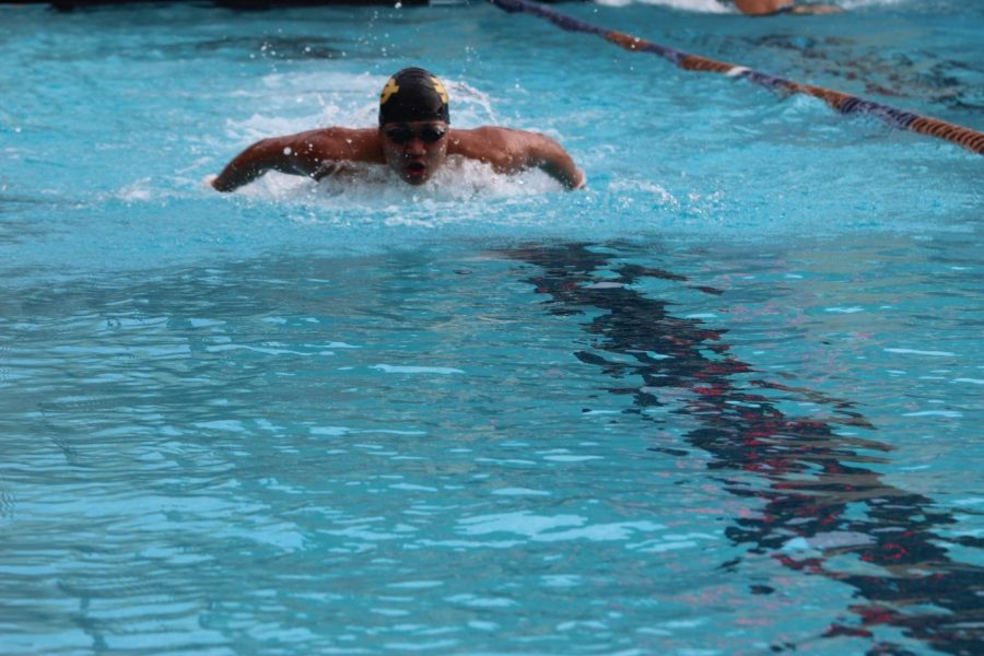 Junior Everett Cheng swam a 59.31in the 100 yard butterfly against Chaffey.