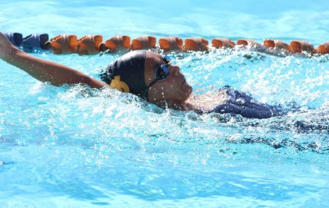 Brahmas pool in records and wins