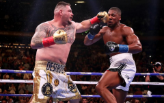 Heavyweight title to be short-lived