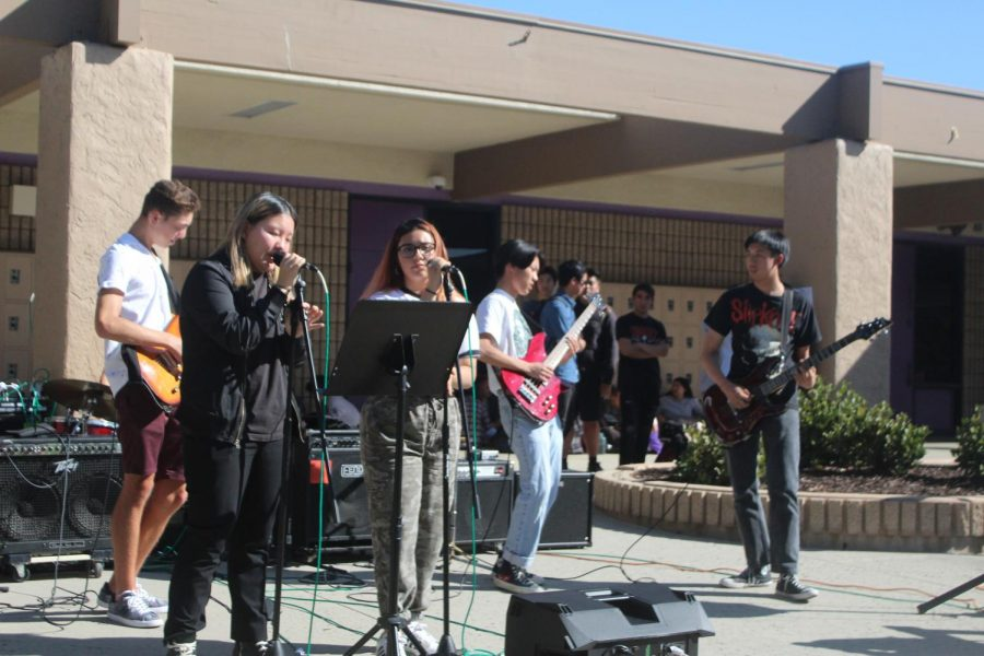 Commercial music performance at lunch