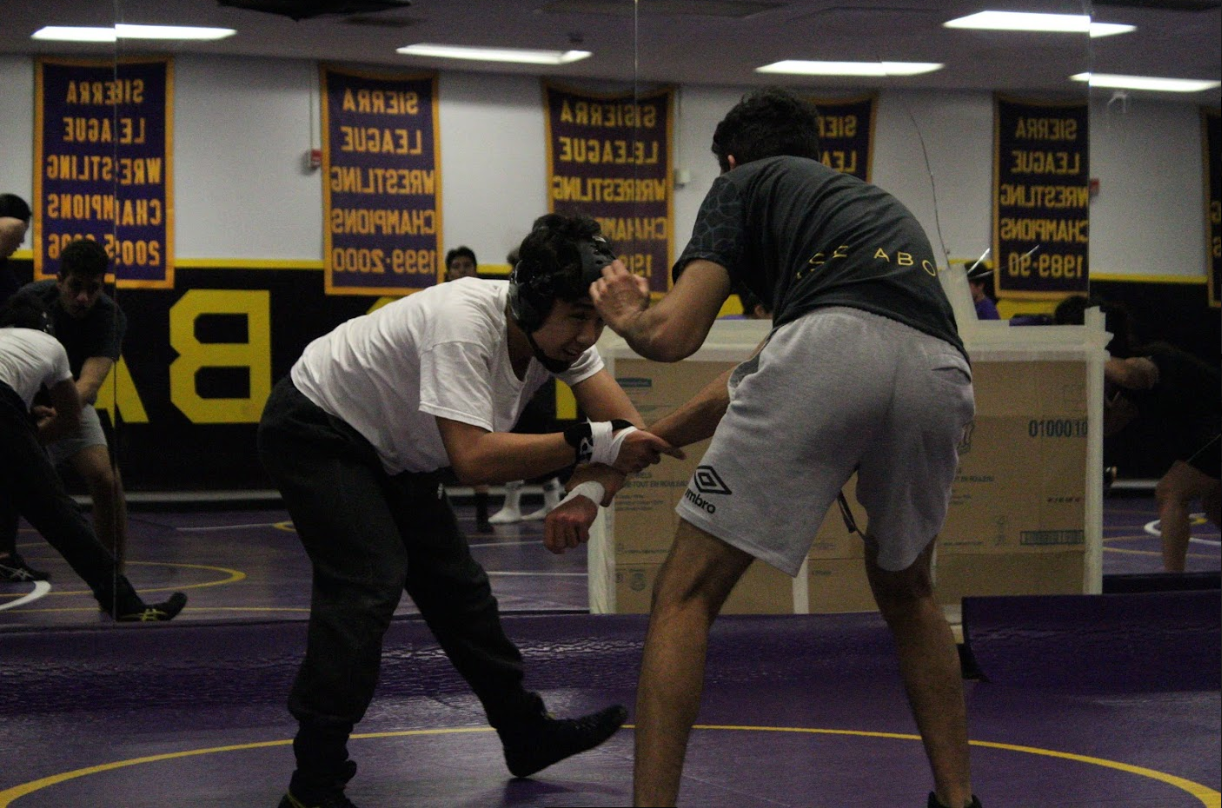 Wong's dedication pays off on the mat
