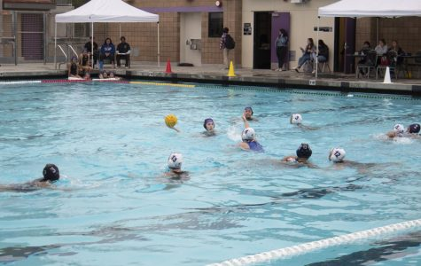Water polo starts strong with early win